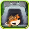 狐狸的旅程